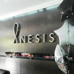 Anesis Salon and Spa